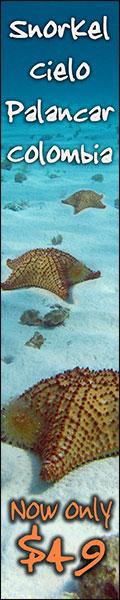 Cozumel Snorkel Tour To Southern Reefs - $49