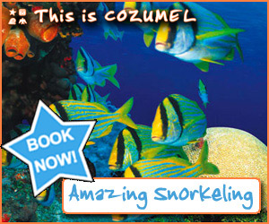 Cozumel snorkel tour