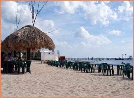 Rental Car Places >> Alberto's Beach - This is Cozumel