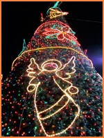 Cozumel Christmas