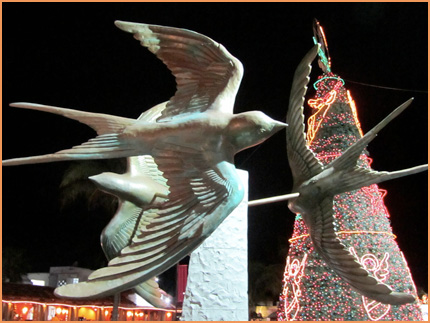 Christmas 2012 in Cozumel.