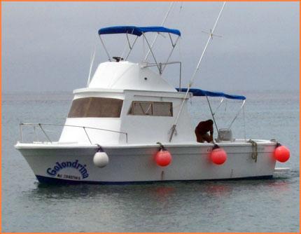 Cozumel fishing charter