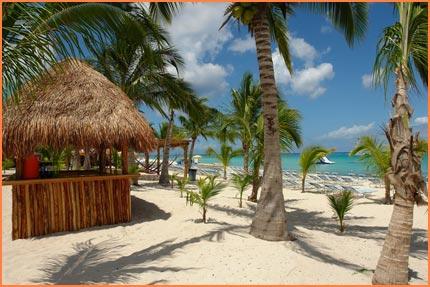 Cozumel beach bar