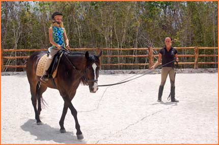 Cozumel horse riding