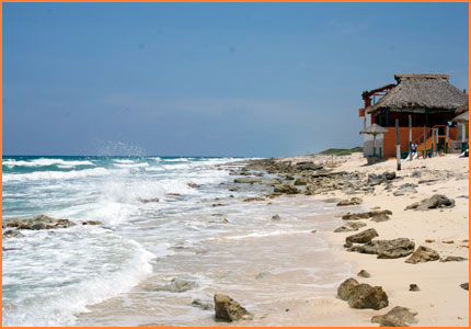 Cozumel east coast tour