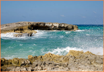 Cozumel island tour
