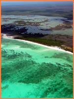 Cozumel Lagoons