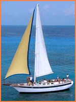Cozumel sailing tours