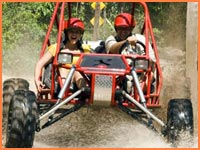Cozumel buggy tour