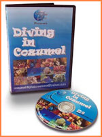 Cozumel dive videos