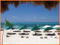 Cozumel tour bookings