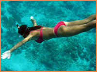 Cozumel snorkeling.